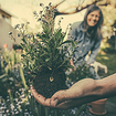 Reap the Benefits of Self-Directed Roth IRAs