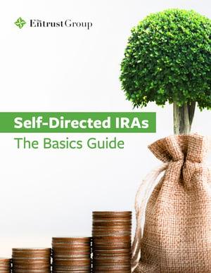 Free-Self-Directed-IRABasics-Guide