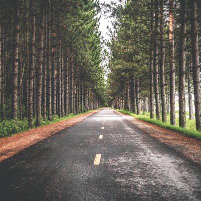 Take the wheel to self-direct your retirement savings