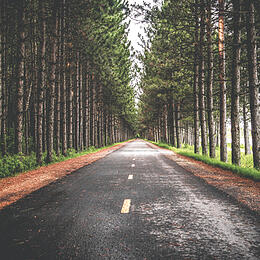 Take the Wheel to Self-Direct Your Retirement Savings (We Can Help)