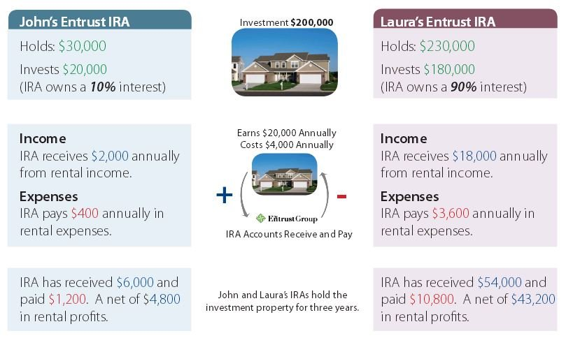 Real Estate Partnering IRA Infographic Part 1