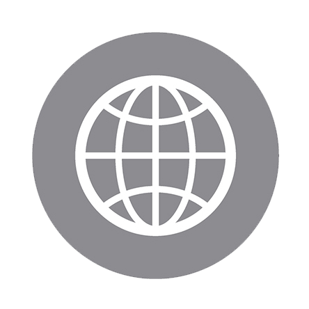 website-globe-icon.png
