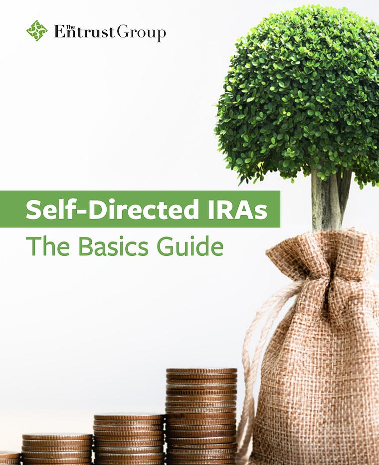 ssdira-basics-guide-cta-cover-home-2